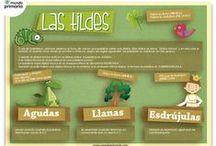 Cosas gramaticales / Fuentes para la enseñanza de cosas gramaticales del idioma  español