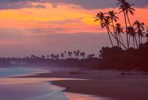 |Life's A Beach|