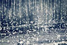 |Purple Rain|