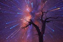 |Stardust|
