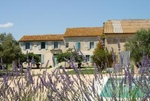 Fascinating France / France vacation rentals via local owners. Whether you are searching for a romantic short term Paris France vacation apartment in the Marais, a luxury villa where you can unwind on the French Riviera or a rugged ski chalet high in the French Alps. We even have renovated chateaus which function as Provence France accommodation and Bed and Breakfasts located in  that advertise on our site.
