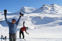 Ski Touring Mistaya Lodge / Watch as Guests, Guides and Staff at Mistaya Lodge and Alpine Tours hit the Rocky Mountain Slopes This ski Season!