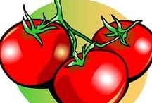 Food on Friday: Tomatoes