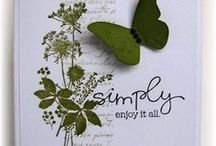 Stamped and Embossed Cards / Hand stamped and embossed / by Rosemary Reay
