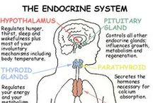Health & Beyond