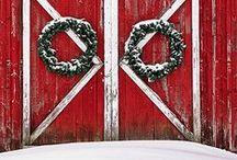 Seasonal/Holidays / by Sue Kope