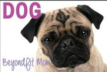 ❯❯❯BeyondFit Mom:Dog / This one goes out to man's best friend.... Our Dogs!