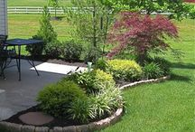 Landscaping and Yard DIY / by Regina Merrick