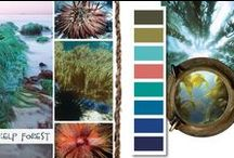 COLOR TREND 2014