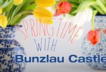 BC || Springtime / With Bunzlau Castle