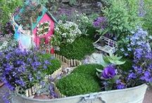 Fairy/Faerie Gardens / Fairy and miniature gardens are an increasingly popular way to add whimsy to your indoor or outdoor spaces!