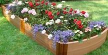 Raised Beds / Raised beds are a great way to keep gardens to a confined space and make for less bending and kneeling while gardening. They are also a great work around for areas with poor soil conditions.