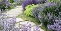 Beautiful Gardens / Breathtaking, colorful landscapes to inspire your creativity!