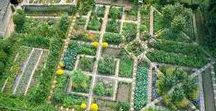 Potager Garden / The traditional potager garden contains symmetrical geometrical garden beds with the vegetables planted in patterns or groups rather than in rows, often with flowers, fruit and herbs intermingled. The most famous Potager is the Gardens of Chateau de Villa dry in France.