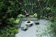 Green City Garden