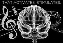 MT - Brain