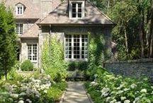 Gardens & Pretty Flowers / The beautiful outdoors. / by Lisa O' Shea