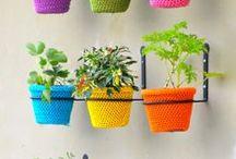 DIY plants & gardens