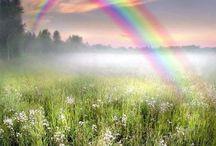 Rainbows arcobaleni★