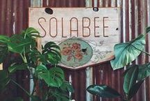 Solabee Downtown / Boutique style plant & flower shop. Located in South West Portland. 902 SW Morrison
