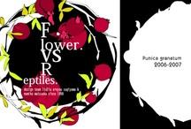 pomegranate/dahlia