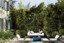 O u t d o o r  I n s p i r a t i o n s / Outdoor renovation and inspirations!