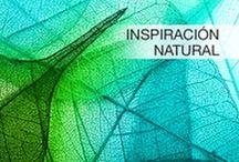 Inspiración Natural / Inspírate con la naturaleza y déjate llevar hasta lograr tu sueño de #remodelación o #decoración con #Interceramic.