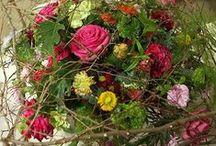 Kukat ja kasvit - Flowers and plants