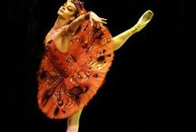 Ballet/Dance for the soul / Ballet, Modern and cultural dancing. Everything in dance is beautiful