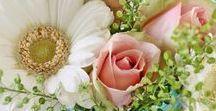 Bouquets, fleurs et pétales / Bouquets, flowers and petals / Les fleurs en tout genre et sous tous les angles pendant les mariages au Domaine de la Ferme Quentel (Finistère) et ailleurs