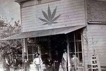 Hemp History / Retro Marijuana