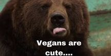 Wild Game Memes / This board is designed to do one thing....crack you folks up.   Oh, and make vegans think about their life choices :)