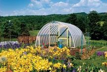 Greenhouses / Build a Greenhouse to extend your growing season.