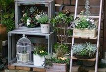 Garden & flowers / gardens & flowers
