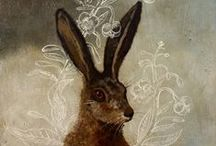 Hares / Images of these magical creatures