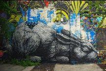 ROA street art / ROA street art