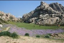 Sardinia visit Sardegna / Una Terra che emerge nel cuore del Mediterraneo per raccontare storia e tradizioni di un popolo unico al mondo. Genti di un'isola che è un piccolo continente, fatto di mille diversità, una sintesi dell'intera umanità.