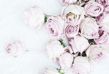✽ Floral Design ✽