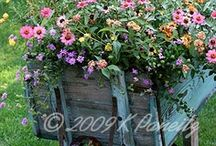 recycle and upcycle in the garden