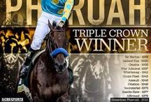 TRIPLE CROWN~ Horse Racing History! / any pins that have to do w/ the triple crown journey, races, horses, jockeys, stories, owners, etc.!  will start from 2015 and work my way back! :D  I'm honored to have witnessed history being made yesterday!!!!!  YAY American Pharoah!