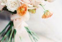 Wedding Inspiration • Apricot, Champagne & Blue