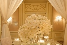 Cool wedding concepts
