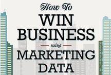 Business Infographics / Business infographics