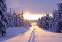 Lapland ❄️ / Gotta love snow, gotta love to visit Lapland one day! ❄️