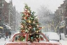 Christmas Trees / Christmas Tree, my Christmas Tree, lit up like the sun....