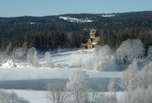 Villa Fridheim - Norges Soria Moria