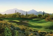 AZ Greens & Fairways / Golf courses around our beautiful state. Contact us for buying homes in these stunning golf course communities