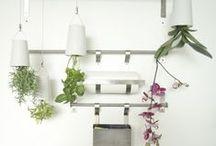 Inspiración macetas Boskke / ¿Quieres descubrir que plantas van mejor para tu boskke? En este tablero encontrarás ideas inspiradoras y trucos para las macetas colgantes boskke.