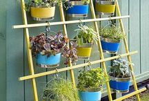 DIY: wall hanging Plants