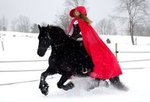Douwe the Amazing Friesian! / Fate brought Douwe into my life 9 years ago. He was imported from the Netherlands as a driving horse, ridden saddleseat and then sold as a trail horse. He did not settle into his new home and displayed dangerous behavior under saddle. Since I bought him he has blossomed into such an amazing horse. Follow Douwe on Facebook to see recent photos, videos, and news about upcoming performances. https://www.facebook.com/DouwetheAmazingFriesian/